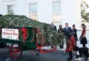 Michelle, Malia, & Sasha Greet the Official White House Christmas Tree
