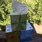 Scotties Bring Home a Box of Softness Campaign #BringHomeABox #ad