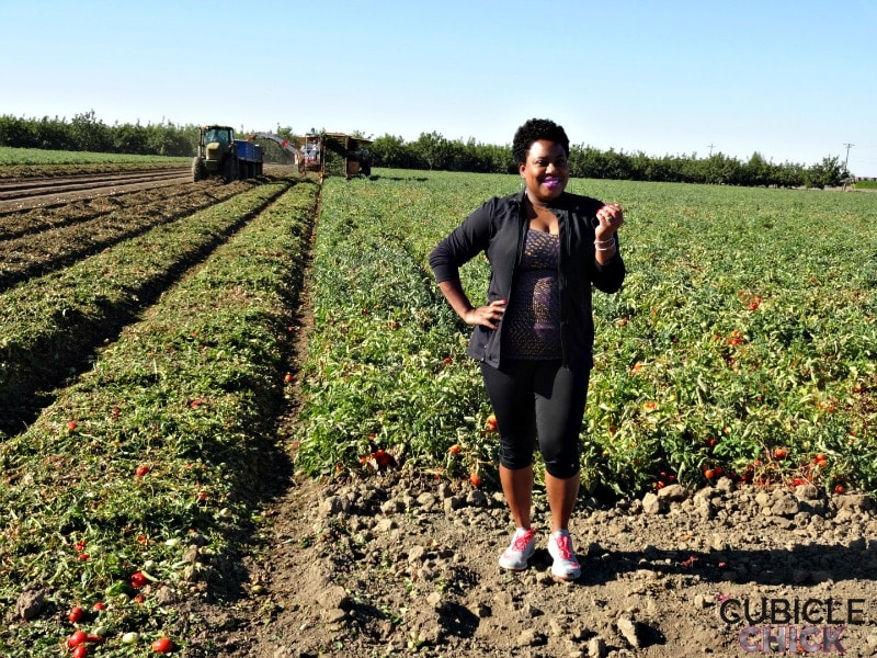 Tomatoes, Peppers, and Melons, Oh My! How I Am Eating Healthier (Sponsored) #FarmToPlate