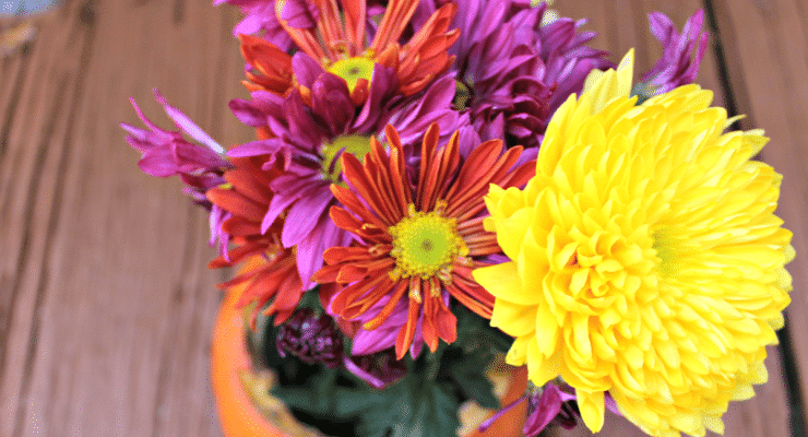 Spice up your fall decor with my DIY Thanksgiving Centerpiece. This pumpkin flower arrangement is easy & takes minutes to make.