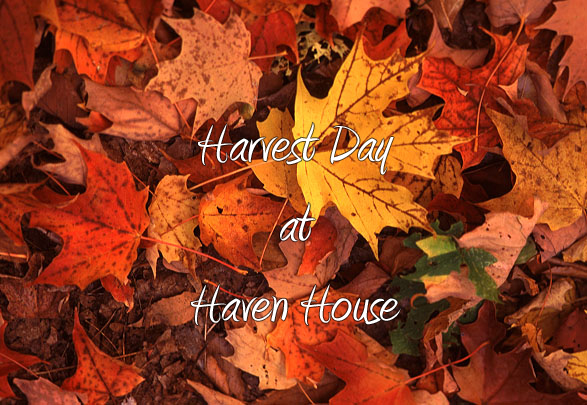 Supply Drive & Harvest Day at Haven House!
