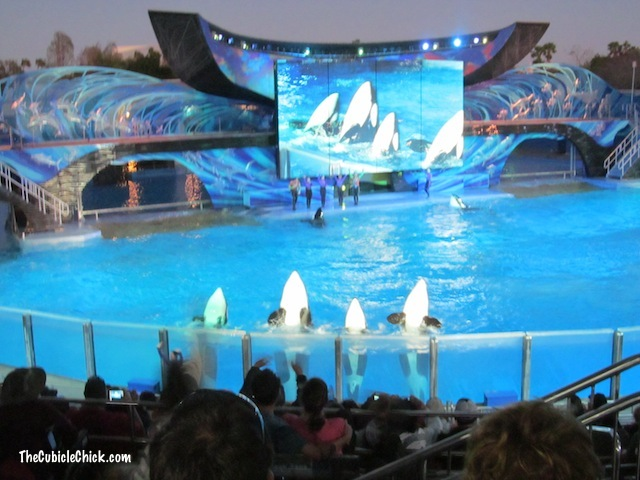 Family Vacation: Sea World Orlando Is More Than Shamu