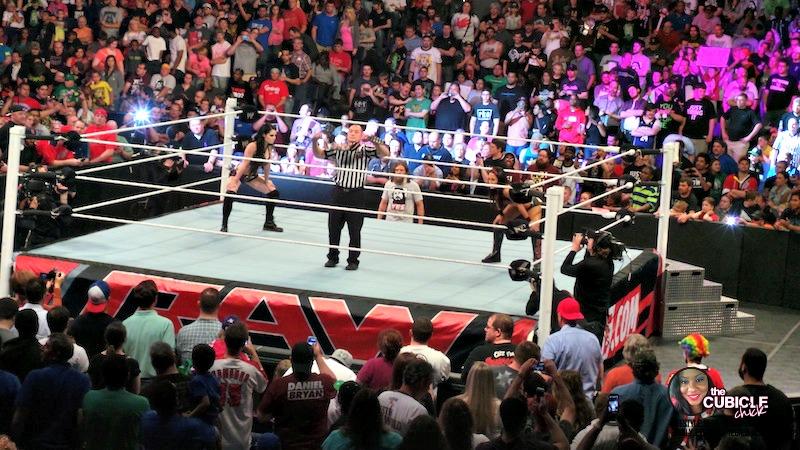 WWE Divas Brie vs Paige