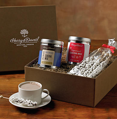 Harry and David Holiday Hot Chocolate Duo Box