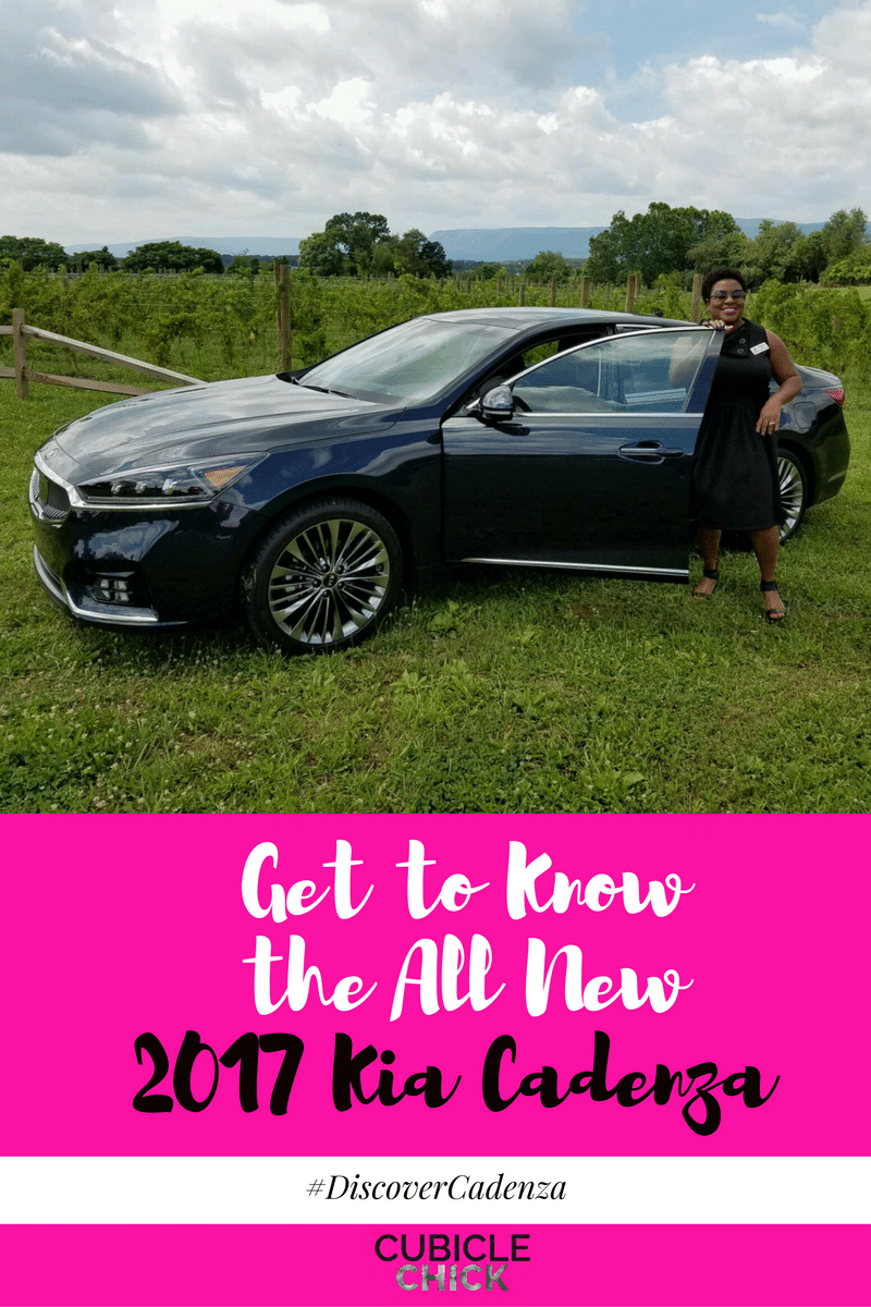 Get to Know the All New 2017 Kia Cadenza