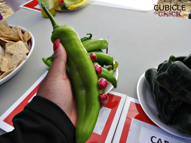 Hot Peppers at Woodland