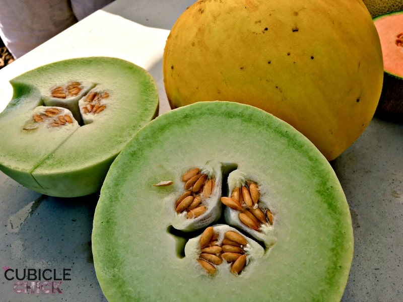 Melons in Woodland