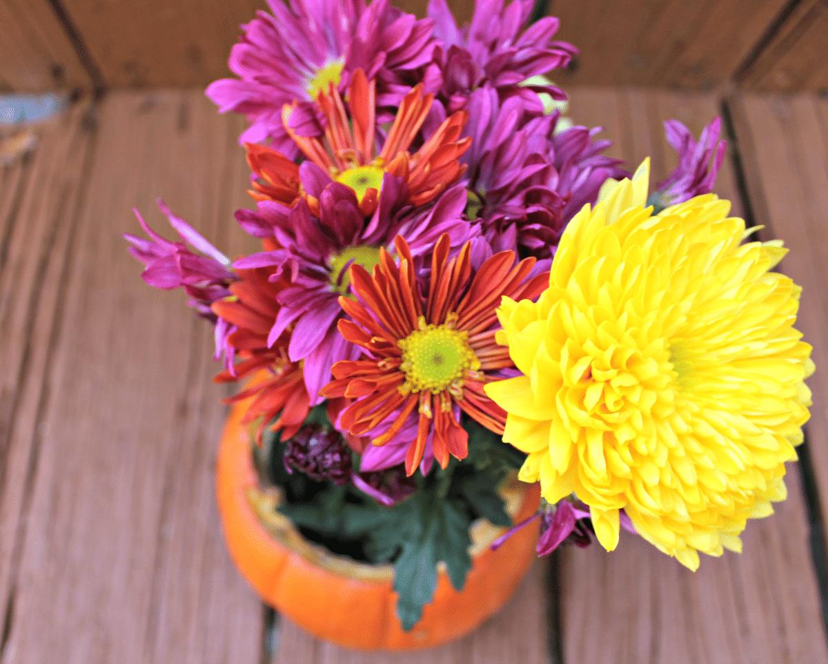 DIY Thanksgiving Centerpiece: Pumpkin Flower Arrangement
