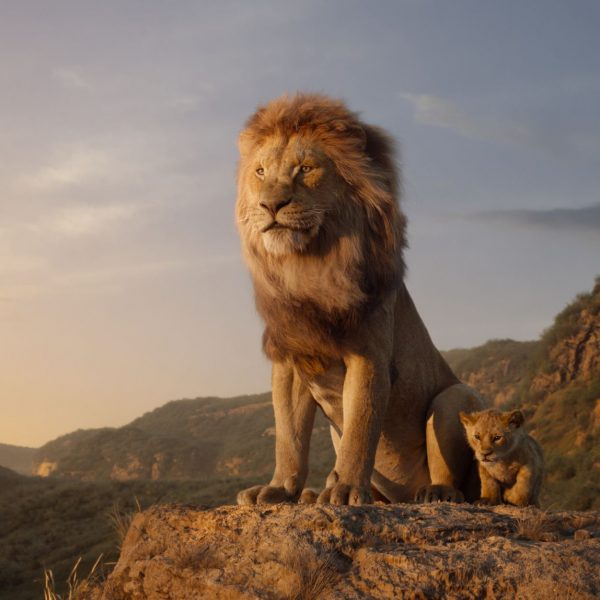 The New Lion King Trailer Is Here and I Am Getting My Whole Life